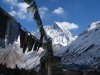prayer-flags-annapurans-himalayas-nepal