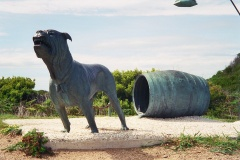 Dogs of Port Arthur